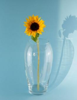 Váza vyrobená z fúkaného krištálového skla od popredného slovenského výrobcu Rona.