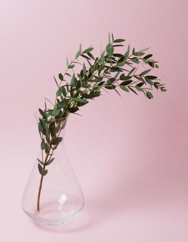 Štýlová univerzálna sklenená karafa na víno, vodu alebo kvety