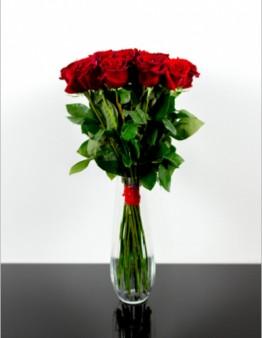 Tradičné ruže s dlhými stopkami červené